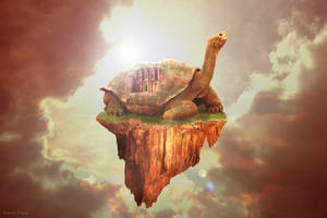 Turtle of Petra by Pinneis