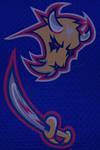 Buffalo Sabres Logo Rebrand