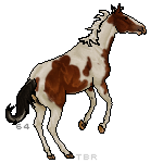 Thoroughbred Registry Exclusive Tag by Honey-Hill