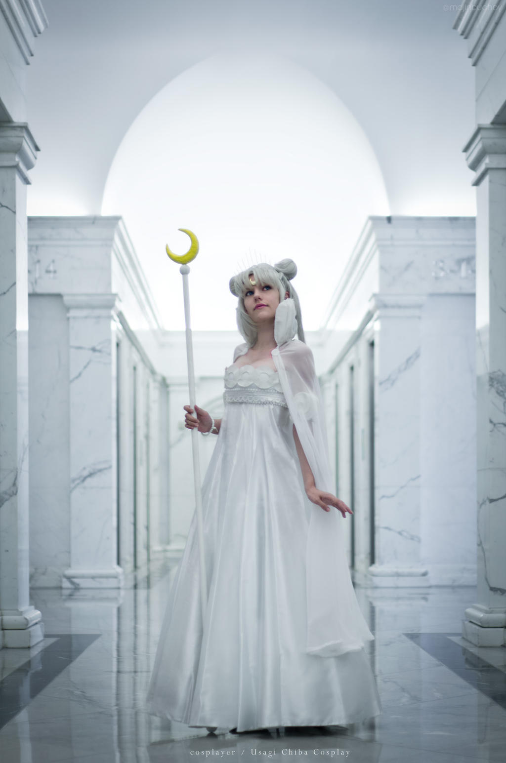 Princess Serenity 01 by MajinBuchoy