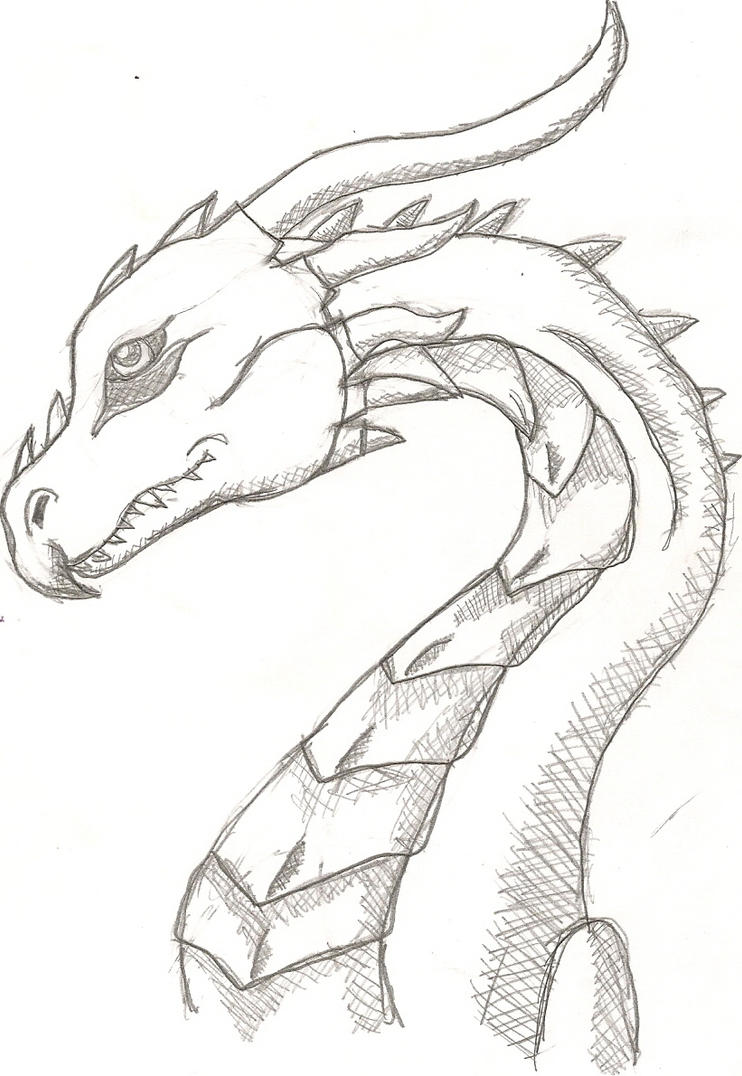 Dragon Heads Howtodraw By Takato14 Dragon Head 3 By Lilwolfgirl