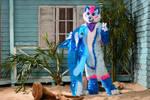 Furry Rainbow Fox