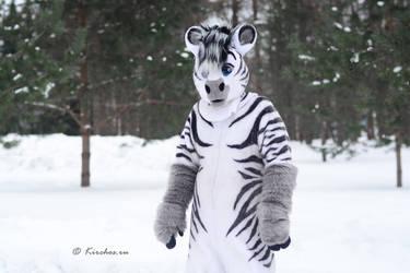 Rusfurrence 2017 Zebra by Kirchos