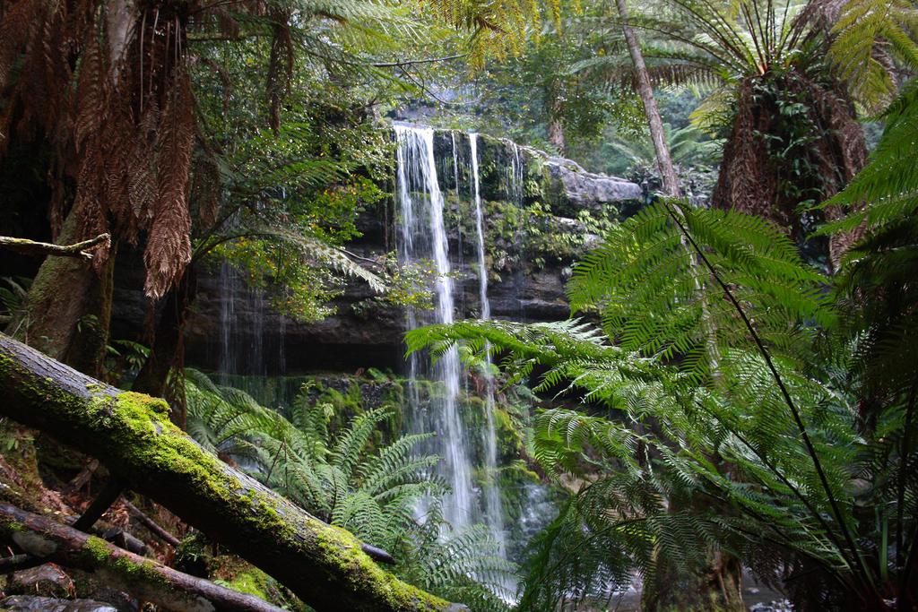 chasing waterfalls by O-Gosh