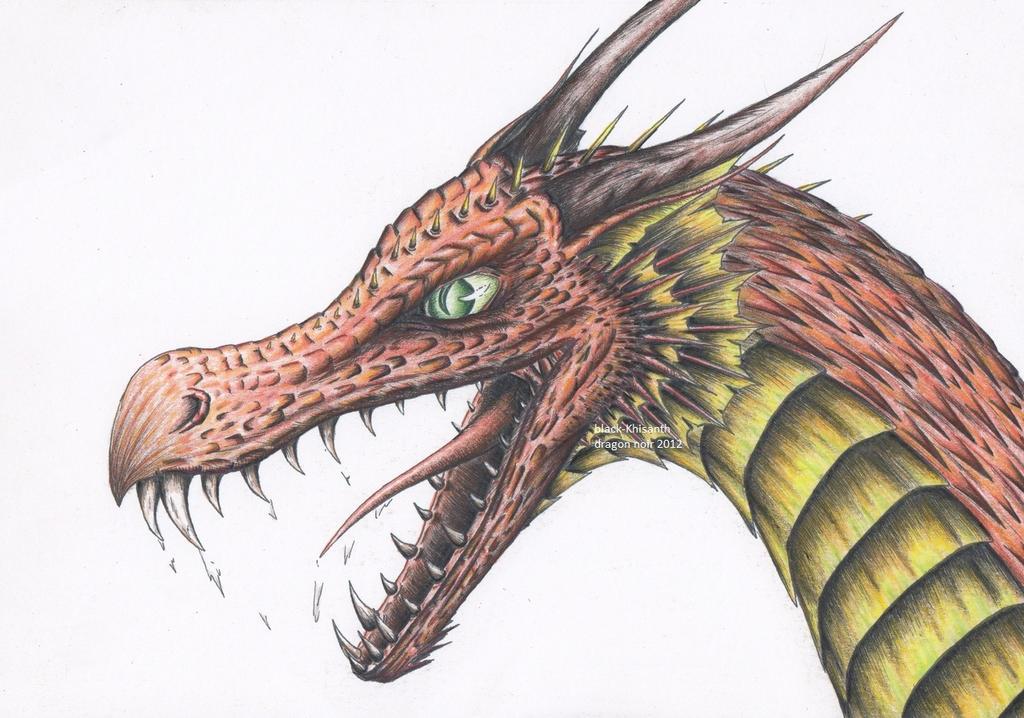 Tete de dragon rouge by black khisanth on deviantart - Dessin de tete de dragon ...