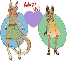 Adoptables sale