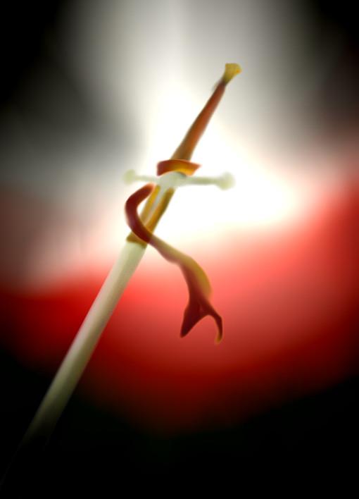 Espada de Wallace