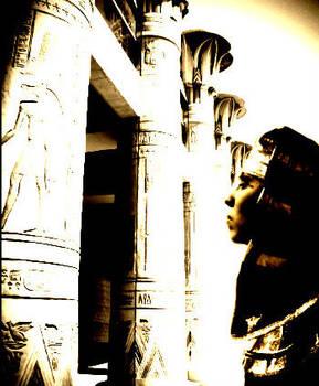 Pharaoh's Glory.