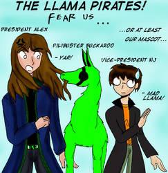 THE LLAMA PIRATES by llamapirates