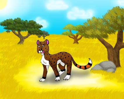 In savanna by Cheetany