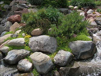 Sunken Garden's Waterfall