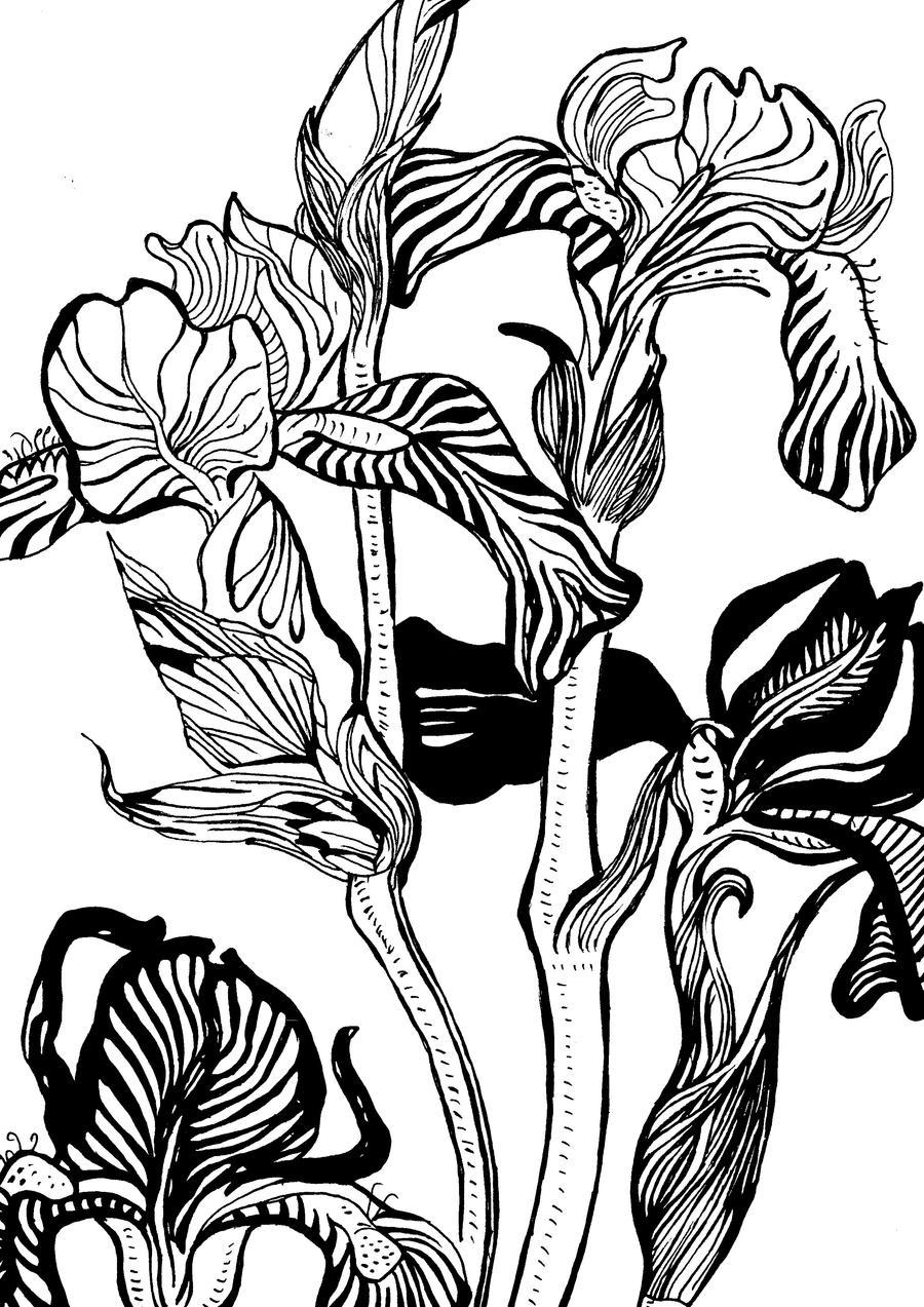 Nature - Art Nouveau graphic 3 by Nerubia on DeviantArt
