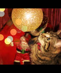 Christmas cat!! by IgnGiannioglou17