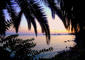 Like paradise by IgnGiannioglou17
