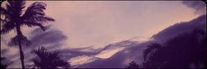 |F2U| Purple Palms Horizontal Divider