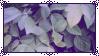 |F2U| Purple Aes. Stamp 2