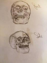 Skulls :) by lukkeystaar
