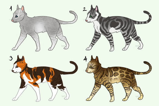 Cat Adopts - 200 points [2/4 open]