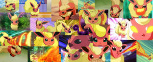 Flareon collage