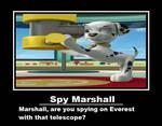 Spy Marshall