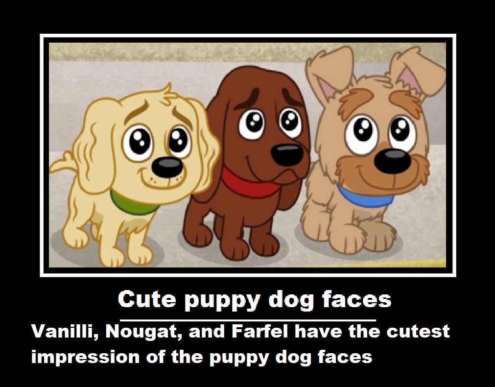 cute puppy dog faces by arvinsharifzadeh on deviantart