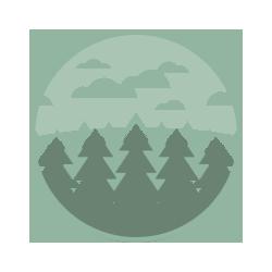 Viridi Icon