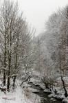 Winter IX by andreiciungan