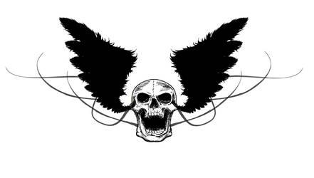 Skull and wings by yusufu