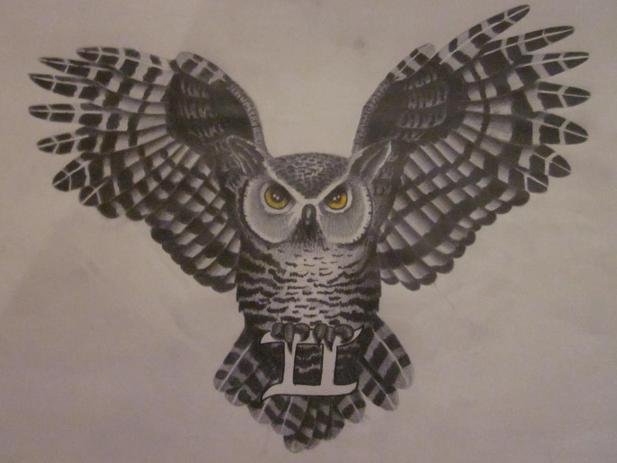 how to draw owl wing