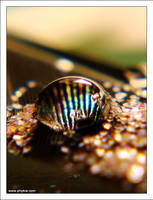 Dichroic Water Bead 4 by phykia