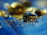 Sea of Gold II