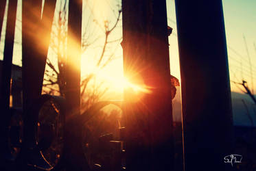 First Light by sunnydsl