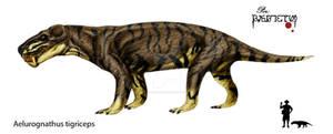 1 Aelurognathus tigriceps