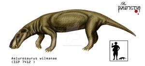 1 Aelurosaurus wilmanae