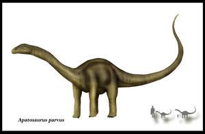 Apatosaurus parvus by karkemish00