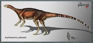 Asylosaurus yalensis