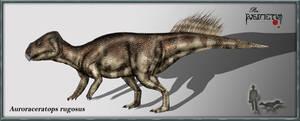 Auroraceratops rugosus by karkemish00