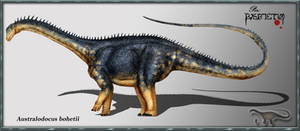 Australodocus bohetii by karkemish00