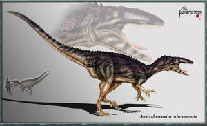 Australovenator wintonensis by karkemish00