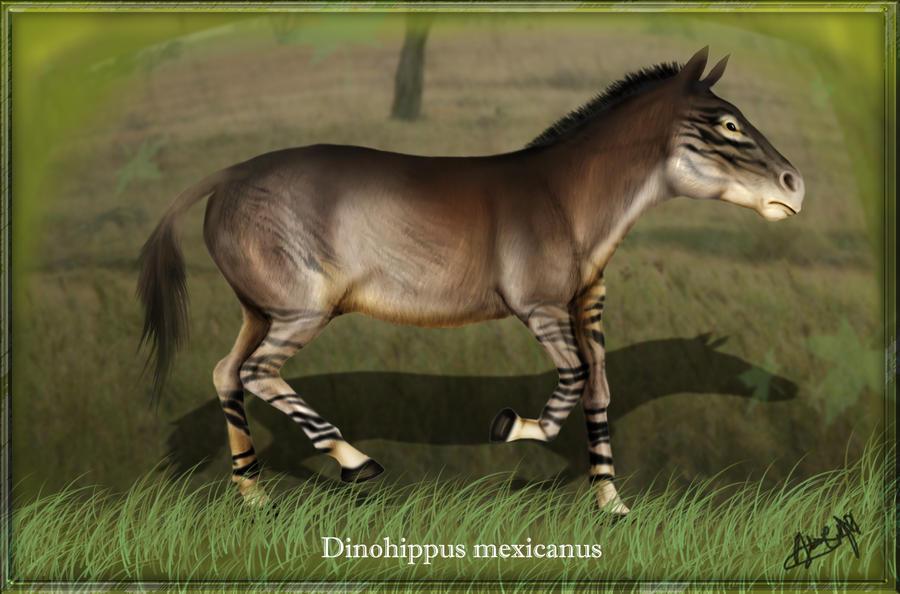 http://karkemish00.deviantart.com/art/Dinohippus-mexicanus-178238670#/art/Dinohippus-mexicanus-178238670?_sid=29edf07d
