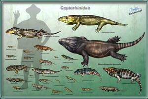 Captorhinidae by karkemish00