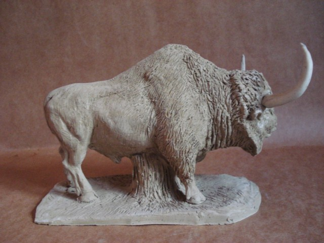 Bison aguascalientensis clay
