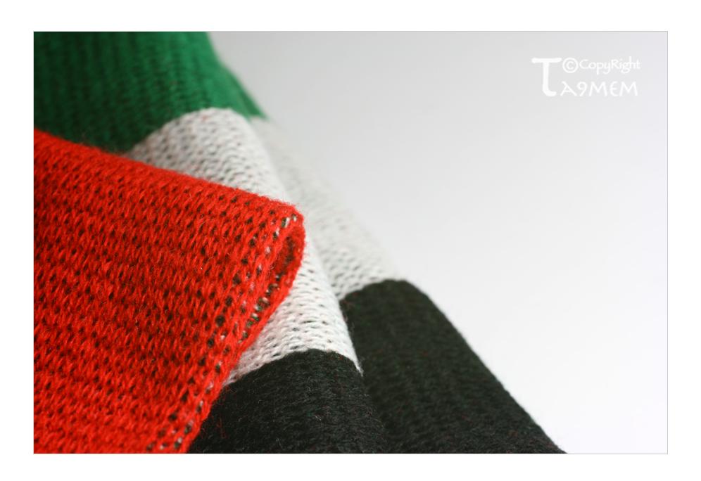 I LOVE UAE ... by ta9mem