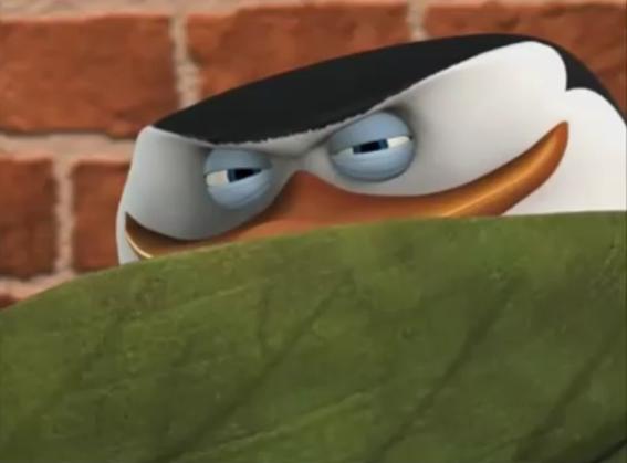 Skipper's Pedo Stare