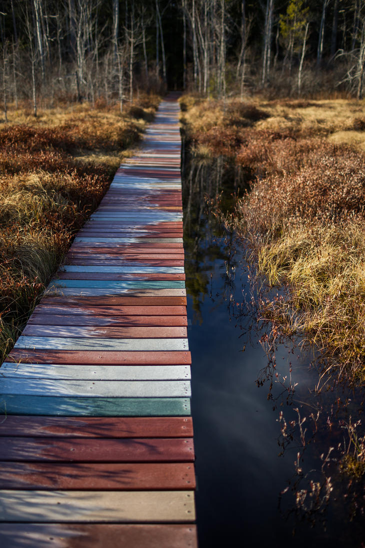 Walking the Planks at the Heath by froggynaan