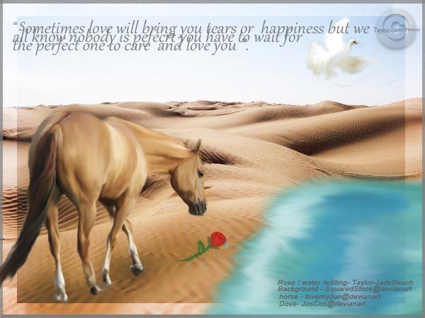 Horse Love by Taylor-JadeBeach