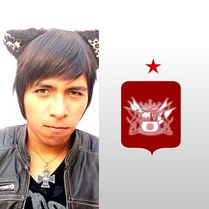 lichtstadt's Profile Picture