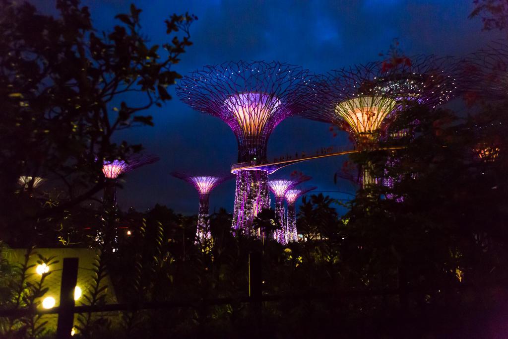 Singapore-0457 by FlWeyand