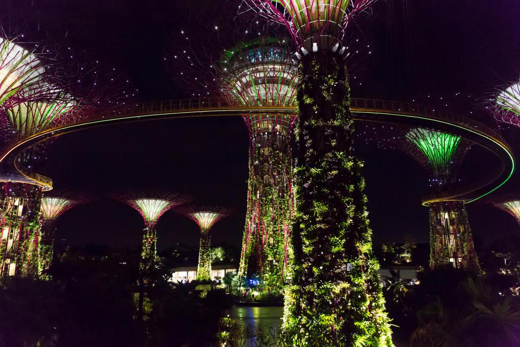 Singapore-0501 by FlWeyand