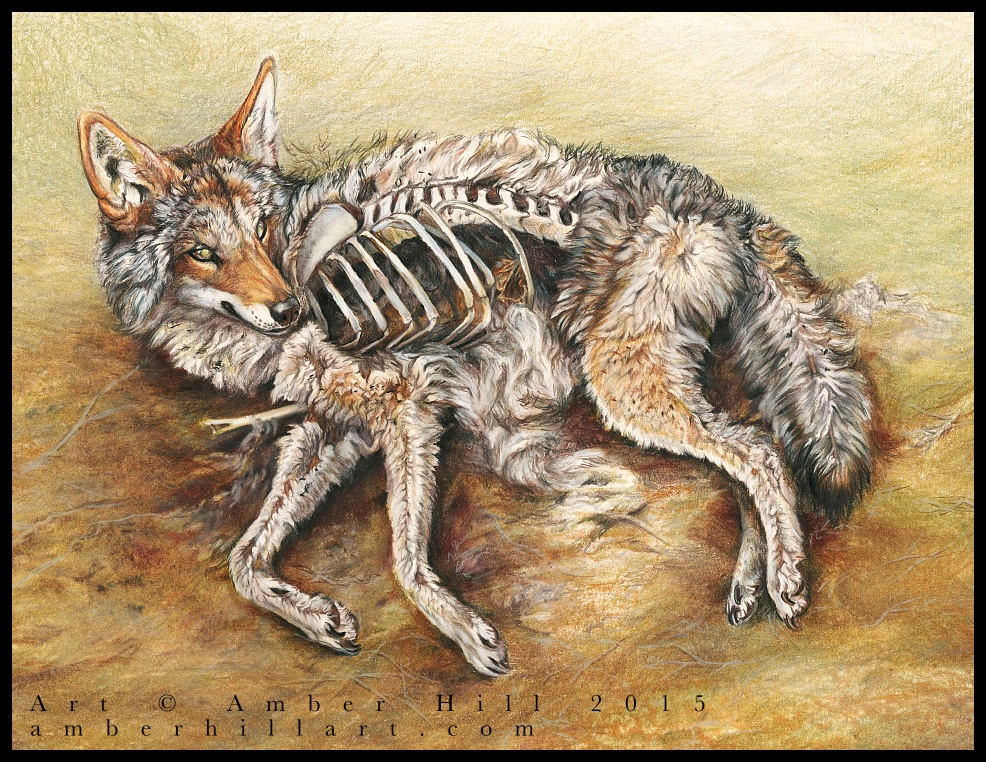 Coyote Resurrection by vantid